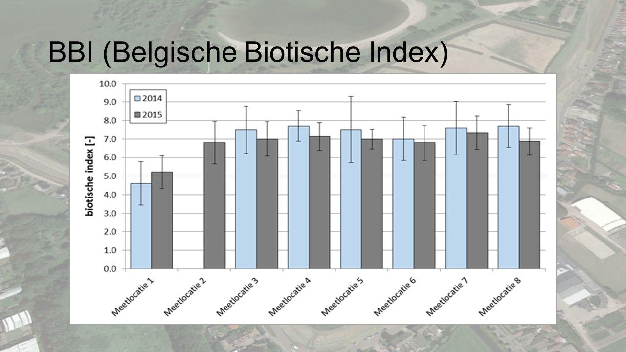 BBI (Belgische Biotische Index)