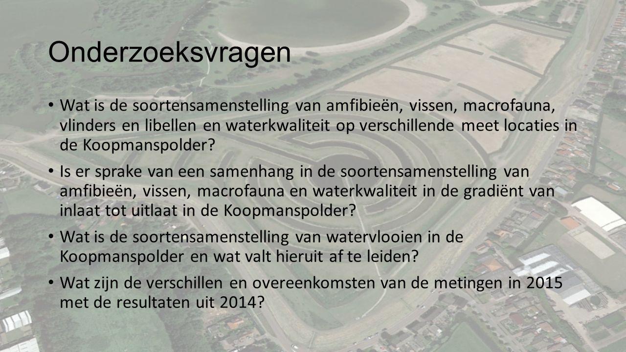 Onderzoeksvragen Wat is de soortensamenstelling van amfibieën, vissen, macrofauna, vlinders en libellen en waterkwaliteit op verschillende meet locaties in de Koopmanspolder.