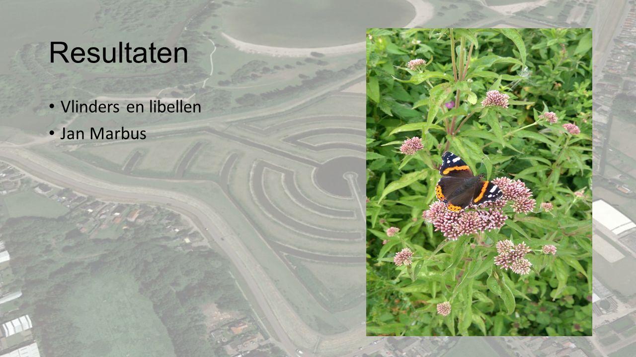 Resultaten Vlinders en libellen Jan Marbus