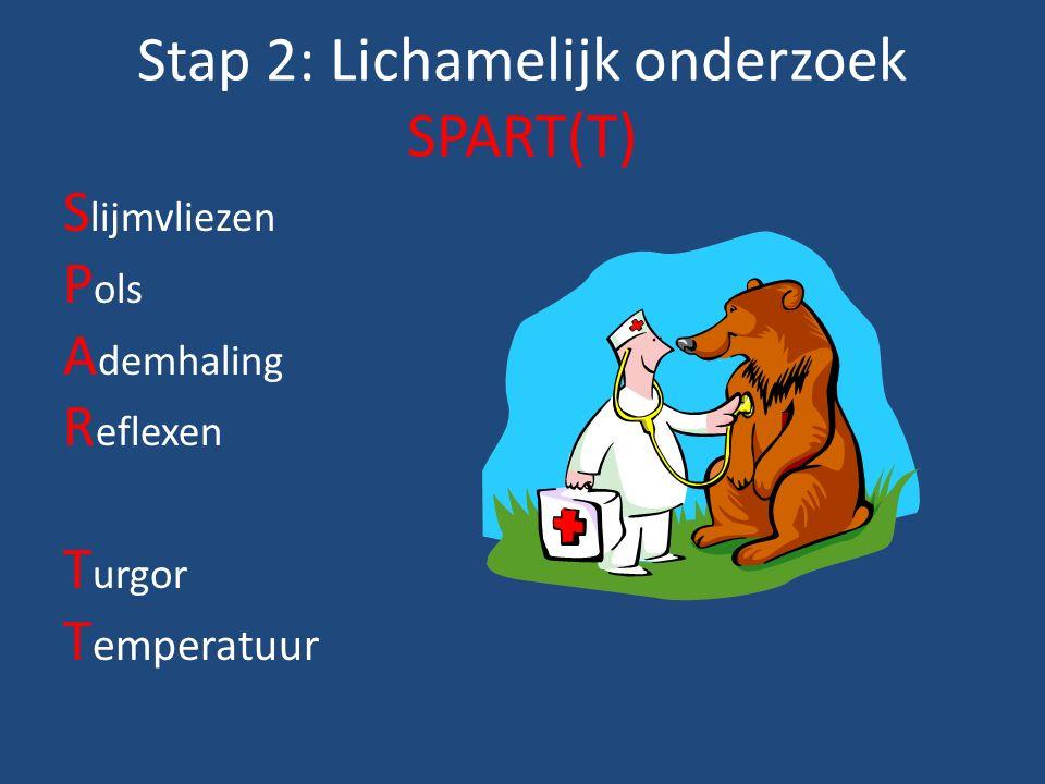 Stap 2: Lichamelijk onderzoek SPART(T) S lijmvliezen P ols A demhaling R eflexen T urgor T emperatuur