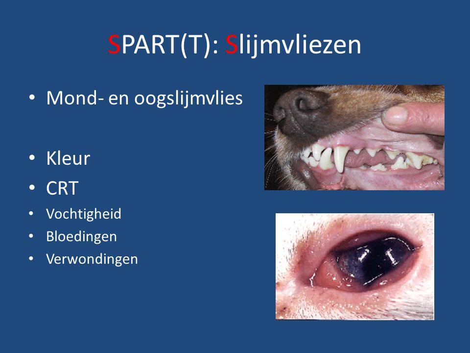 SPART(T): Slijmvliezen Mond- en oogslijmvlies Kleur CRT Vochtigheid Bloedingen Verwondingen