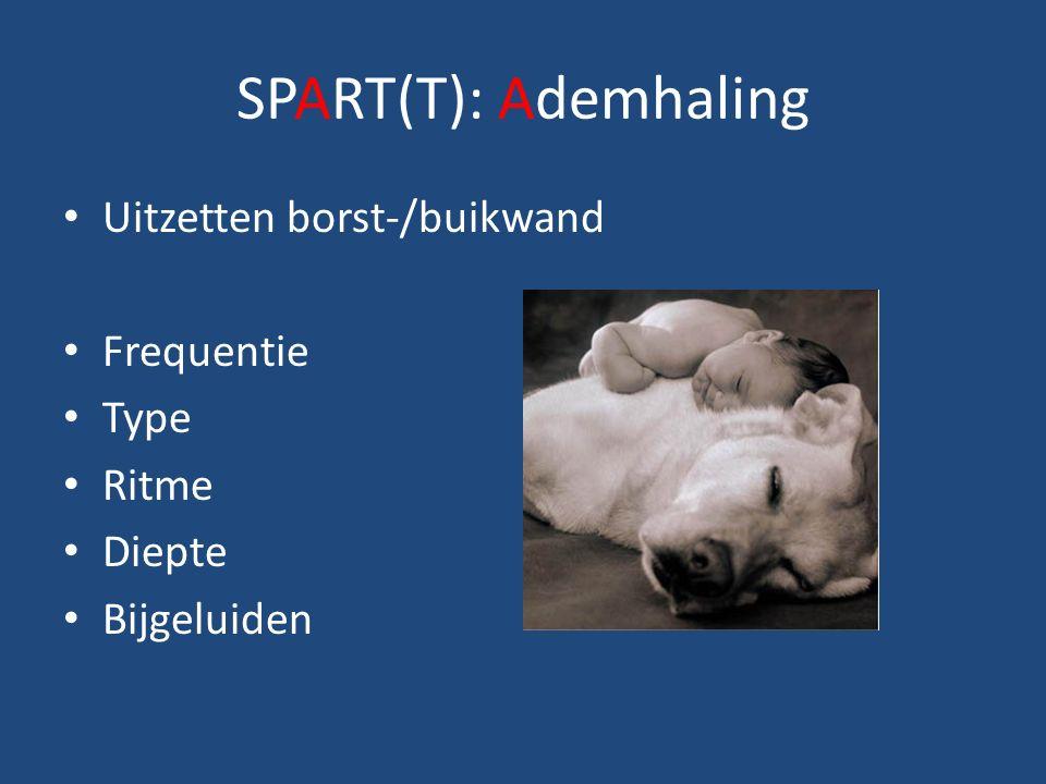 SPART(T): Ademhaling Uitzetten borst-/buikwand Frequentie Type Ritme Diepte Bijgeluiden