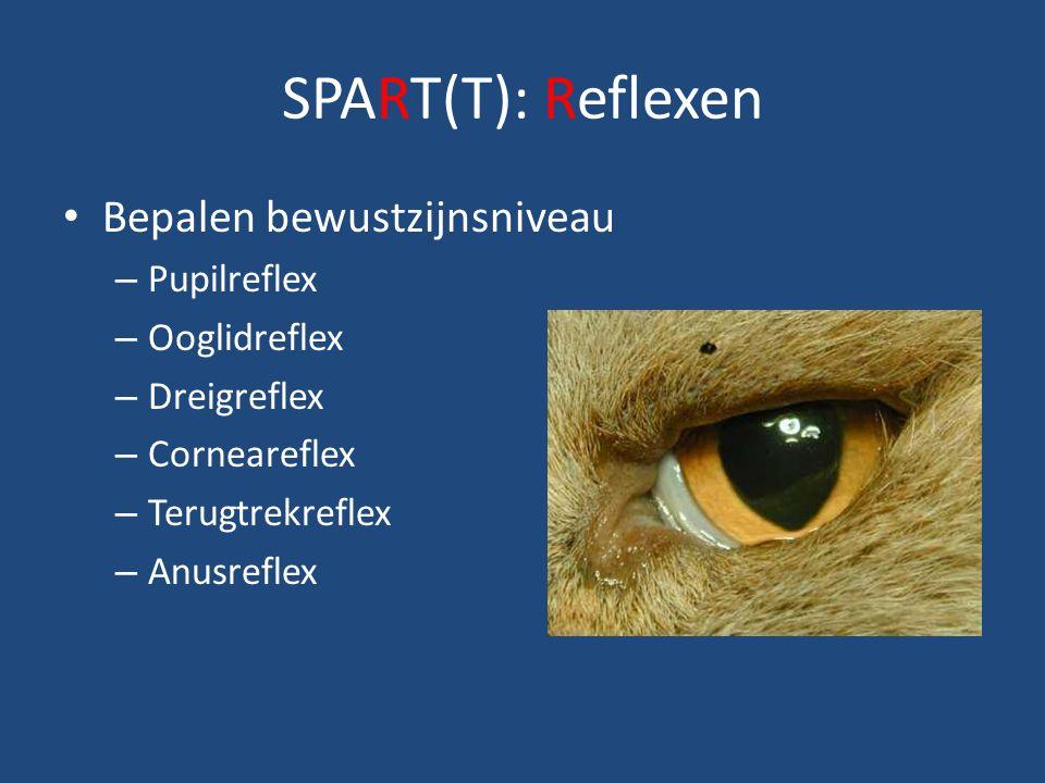 SPART(T): Reflexen Bepalen bewustzijnsniveau – Pupilreflex – Ooglidreflex – Dreigreflex – Corneareflex – Terugtrekreflex – Anusreflex