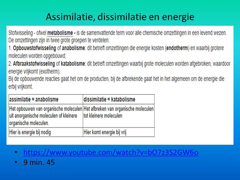 Assimilatie, dissimilatie en energie https://www.youtube.com/watch v=bO7z3S2GW6o 9 min. 45