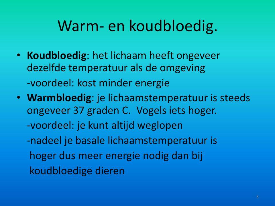 Warm- en koudbloedig.