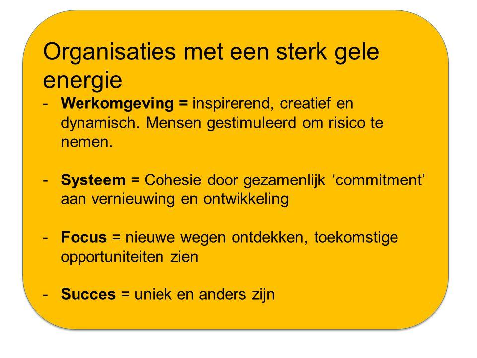 Organisaties met een sterk gele energie -Werkomgeving = inspirerend, creatief en dynamisch. Mensen gestimuleerd om risico te nemen. -Systeem = Cohesie