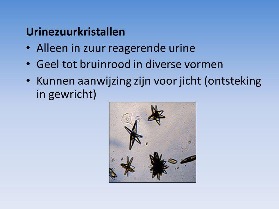Urinezuurkristallen Alleen in zuur reagerende urine Geel tot bruinrood in diverse vormen Kunnen aanwijzing zijn voor jicht (ontsteking in gewricht)