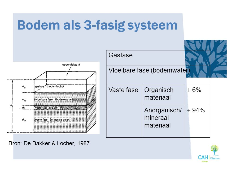 Bodem als 3-fasig systeem Gasfase Vloeibare fase (bodemwater) Vaste faseOrganisch materiaal ± 6% Anorganisch/ mineraal materiaal ± 94% Bron: De Bakker