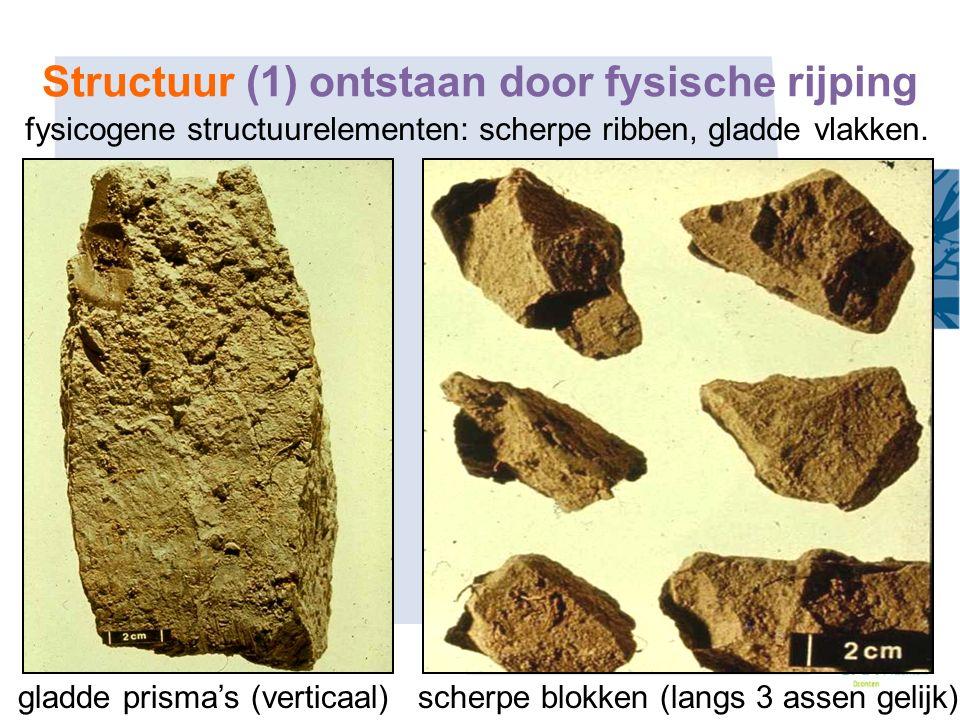 fysicogene structuurelementen: scherpe ribben, gladde vlakken. gladde prisma's (verticaal) scherpe blokken (langs 3 assen gelijk) Structuur (1) ontsta