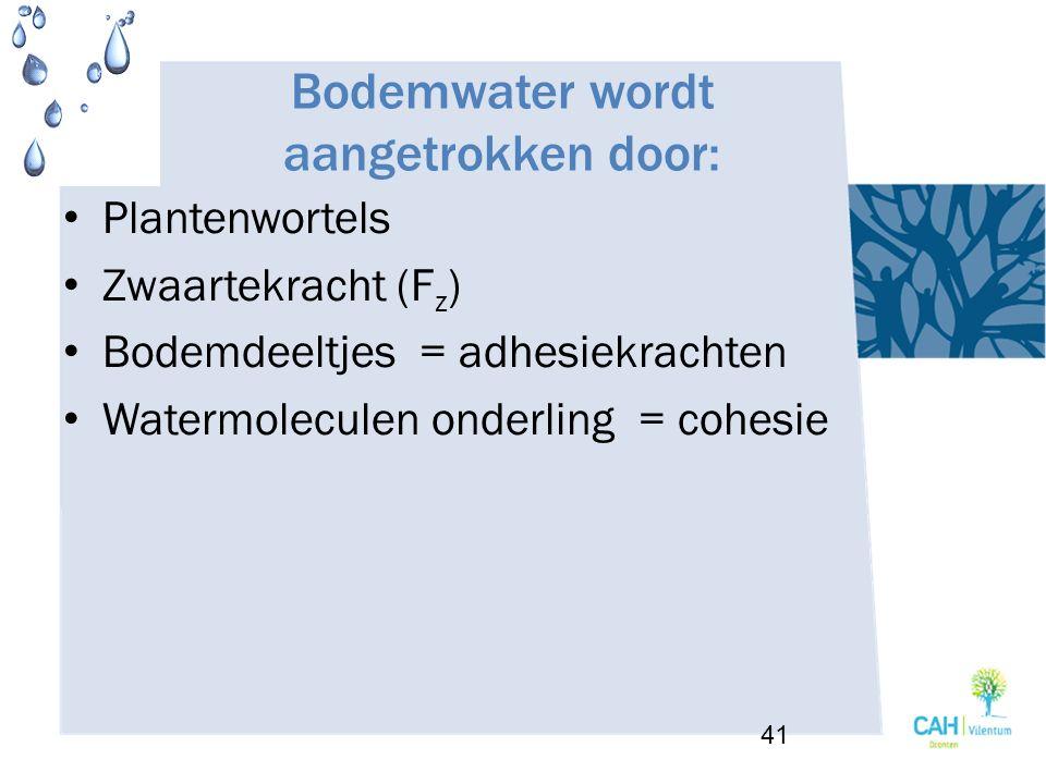 Bodemwater wordt aangetrokken door: Plantenwortels Zwaartekracht (F z ) Bodemdeeltjes = adhesiekrachten Watermoleculen onderling = cohesie 41