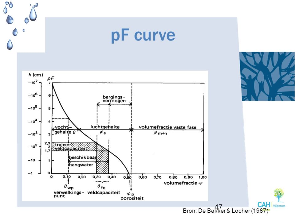 pF curve 47 Bron: De Bakker & Locher (1987)