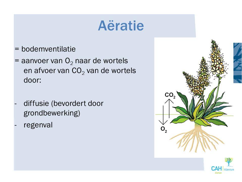 Aëratie = bodemventilatie = aanvoer van O 2 naar de wortels en afvoer van CO 2 van de wortels door: -diffusie (bevordert door grondbewerking) -regenva