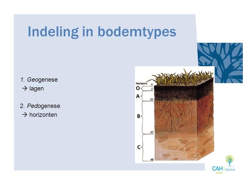 Indeling in bodemtypes 1. Geogenese  lagen 2. Pedogenese  horizonten