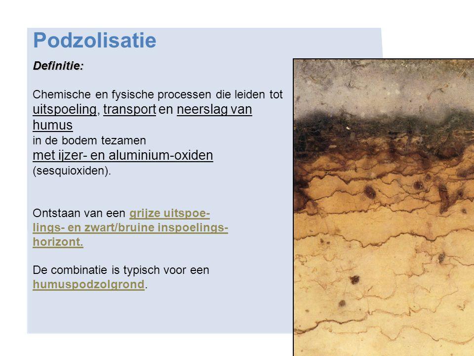 Definitie: Chemische en fysische processen die leiden tot uitspoeling, transport en neerslag van humus in de bodem tezamen met ijzer- en aluminium-oxi