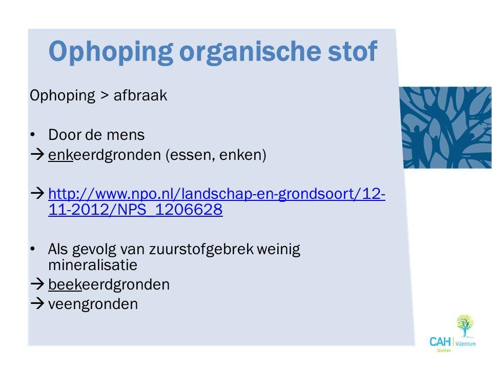 Ophoping organische stof Ophoping > afbraak Door de mens  enkeerdgronden (essen, enken)  http://www.npo.nl/landschap-en-grondsoort/12- 11-2012/NPS_1