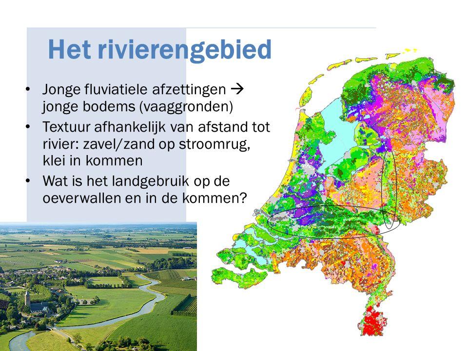 Het rivierengebied Jonge fluviatiele afzettingen  jonge bodems (vaaggronden) Textuur afhankelijk van afstand tot rivier: zavel/zand op stroomrug, kle