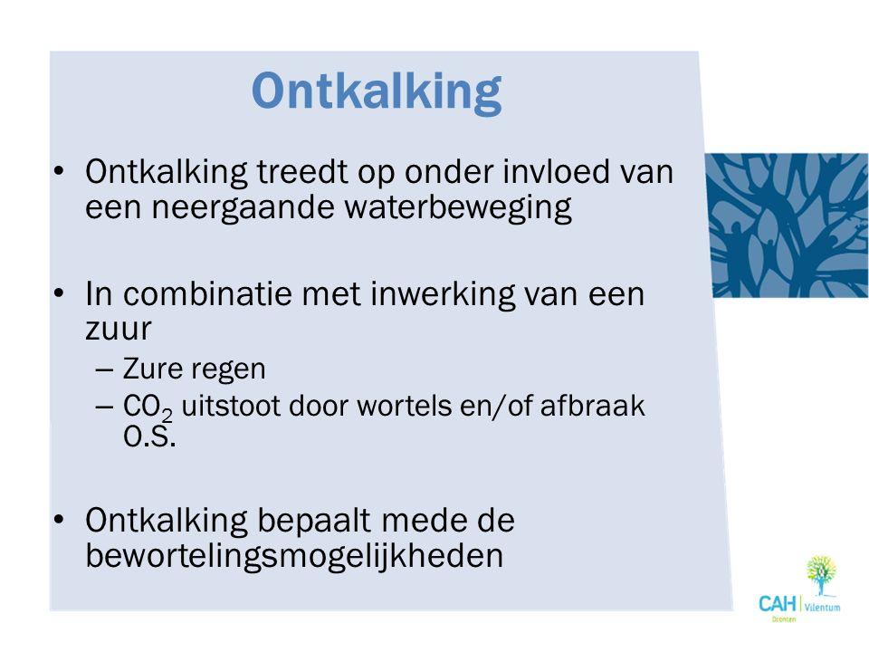 Ontkalking Ontkalking treedt op onder invloed van een neergaande waterbeweging In combinatie met inwerking van een zuur – Zure regen – CO 2 uitstoot d