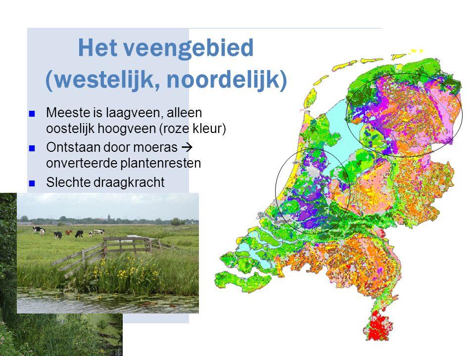 Het veengebied (westelijk, noordelijk) Meeste is laagveen, alleen oostelijk hoogveen (roze kleur) Ontstaan door moeras  onverteerde plantenresten Sle