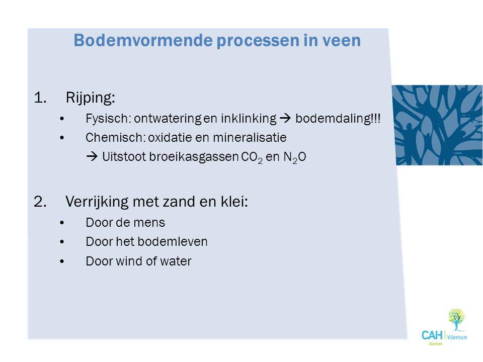 Bodemvormende processen in veen 1.Rijping: Fysisch: ontwatering en inklinking  bodemdaling!!! Chemisch: oxidatie en mineralisatie  Uitstoot broeikas