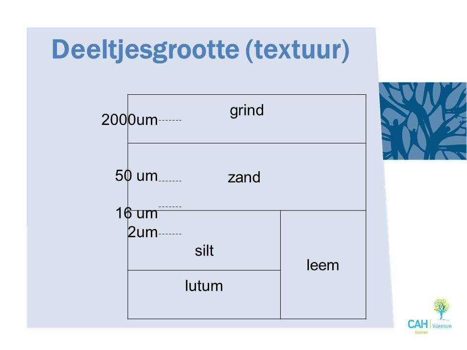 Deeltjesgrootte (textuur) grind zand silt leem lutum 2000um 50 um 16 um 2um