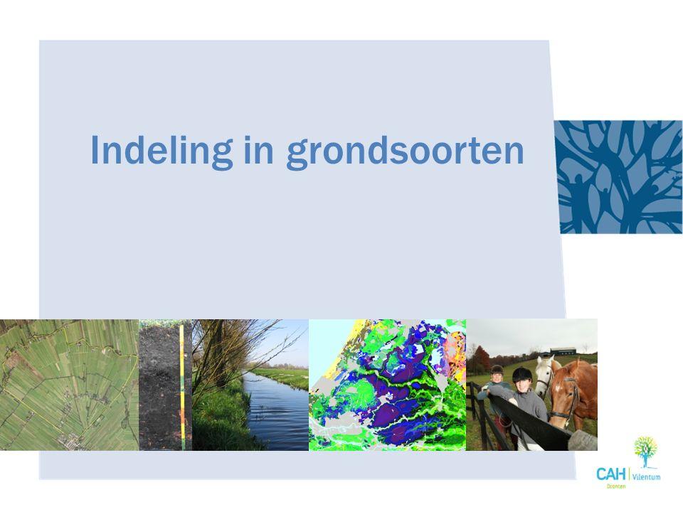 Laagveen – Door hoge grondwaterspiegel ophoping organische stof – Winning onder de grondwaterspiegel