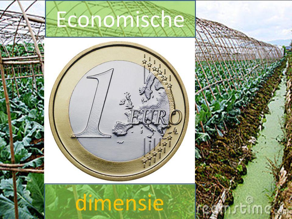 Economische dimensie