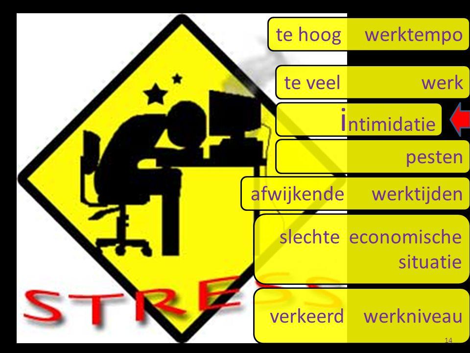te hoog werktempo te veel werk i ntimidatie pesten afwijkende werktijden slechte economische situatie verkeerd werkniveau 14