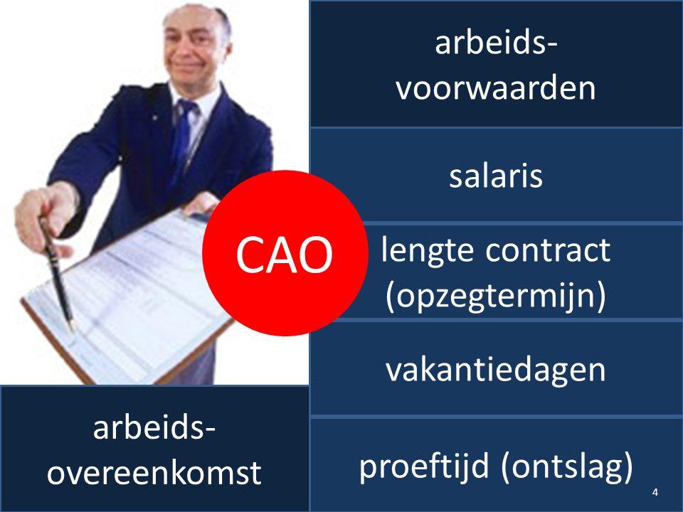 arbeids- overeenkomst salaris lengte contract (opzegtermijn) vakantiedagen proeftijd (ontslag) CAO 4 arbeids- voorwaarden