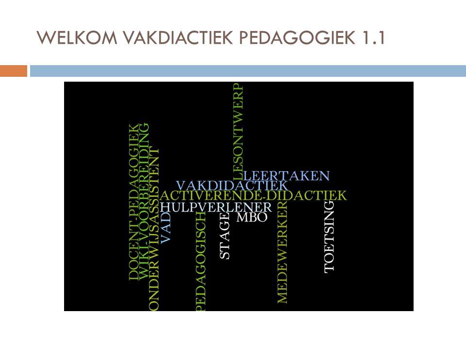 Inhoud VAD bijeenkomst 1.1  Inhoud en doelen  Voorstellen en kennismaken met elkaar  Oriëntatie op het beroep en vakgebied.