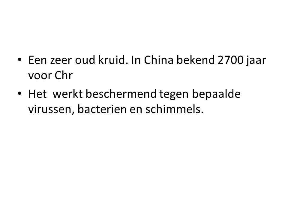 Een zeer oud kruid. In China bekend 2700 jaar voor Chr Het werkt beschermend tegen bepaalde virussen, bacterien en schimmels.