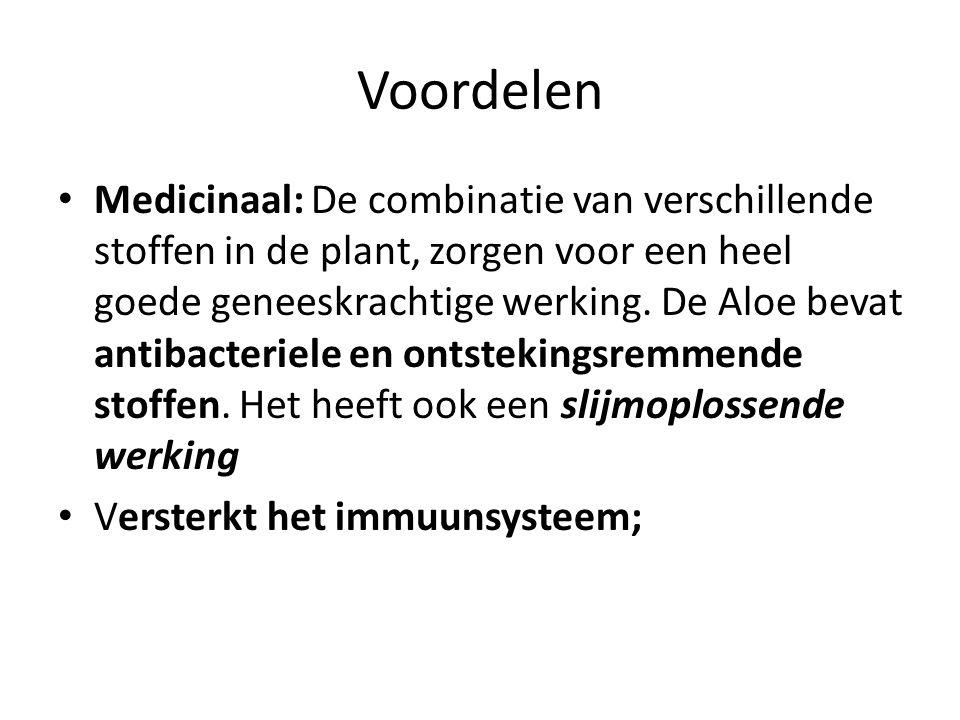 Voordelen Medicinaal: De combinatie van verschillende stoffen in de plant, zorgen voor een heel goede geneeskrachtige werking. De Aloe bevat antibacte