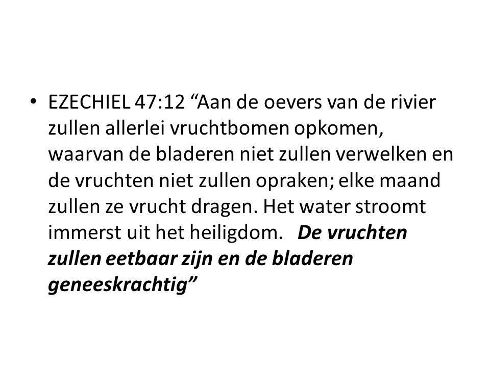 """EZECHIEL 47:12 """"Aan de oevers van de rivier zullen allerlei vruchtbomen opkomen, waarvan de bladeren niet zullen verwelken en de vruchten niet zullen"""