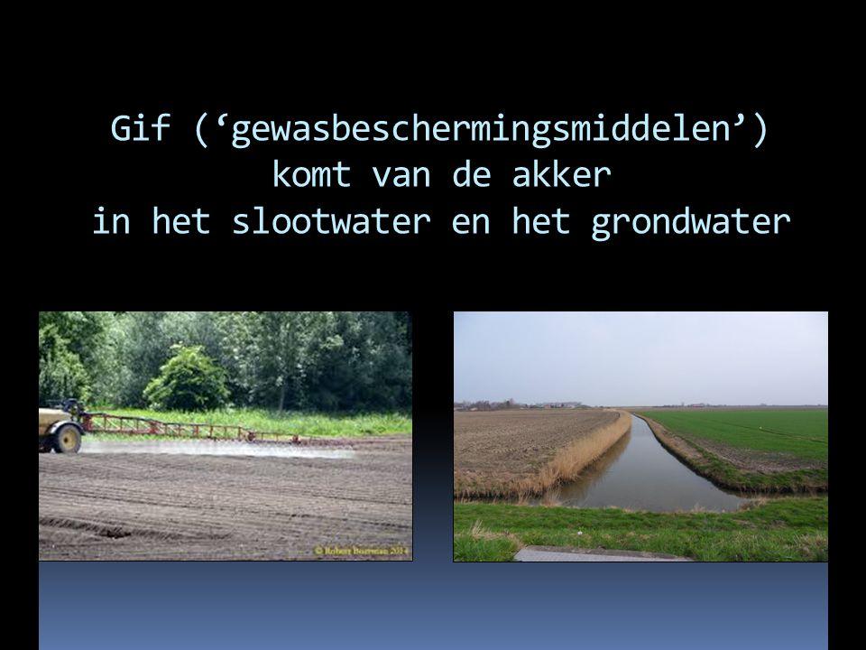 De waterzuiveringsbedrijven krijgen dat gif er vervolgens niet goed uitgefilterd Drinkwater komt voor 60% uit grondwater Kosten zuivering: € 15.000.000 per jaar