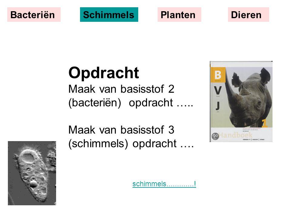 BacteriënSchimmelsPlantenDieren schimmels.............! Opdracht Maak van basisstof 2 (bacteriën) opdracht ….. Maak van basisstof 3 (schimmels) opdrac