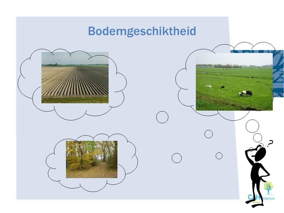 Beoordeling De mate waarin de bodem voldoet aan de eisen die men er voor een bepaald bodemgebruik aan stelt.