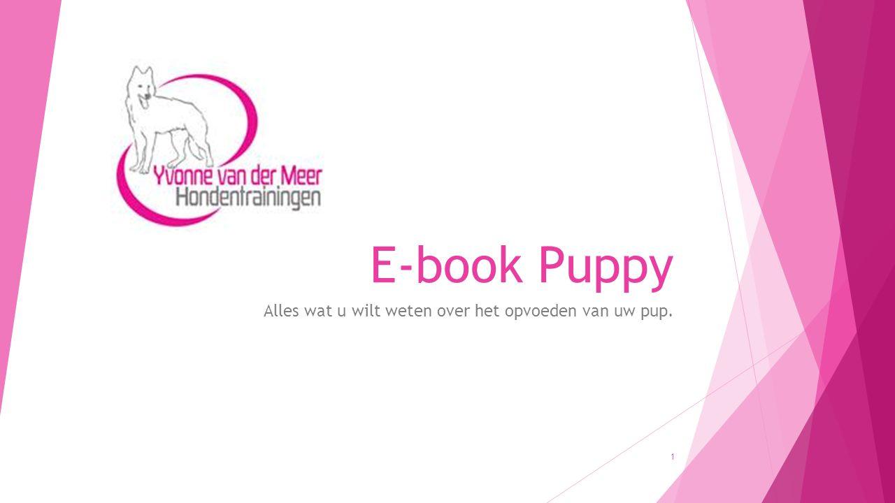 E-book Puppy Alles wat u wilt weten over het opvoeden van uw pup. 1