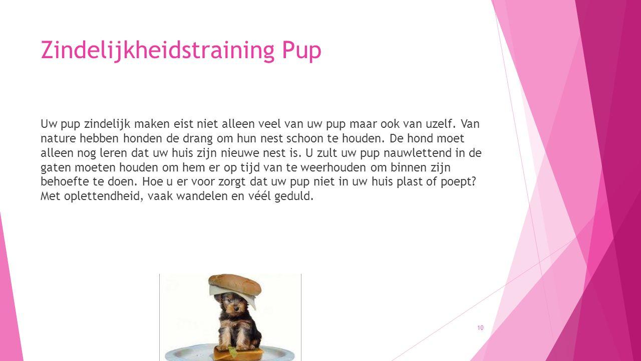 Zindelijkheidstraining Pup Uw pup zindelijk maken eist niet alleen veel van uw pup maar ook van uzelf. Van nature hebben honden de drang om hun nest s