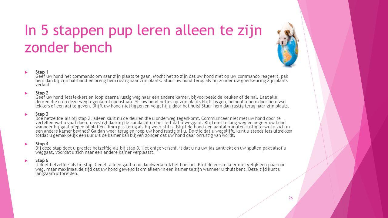 In 5 stappen pup leren alleen te zijn zonder bench  Stap 1 Geef uw hond het commando om naar zijn plaats te gaan. Mocht het zo zijn dat uw hond niet