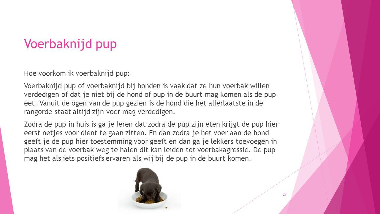 Voerbaknijd pup Hoe voorkom ik voerbaknijd pup: Voerbaknijd pup of voerbaknijd bij honden is vaak dat ze hun voerbak willen verdedigen of dat je niet