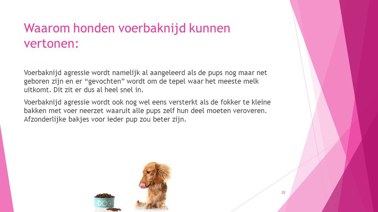 Waarom honden voerbaknijd kunnen vertonen: Voerbaknijd agressie wordt namelijk al aangeleerd als de pups nog maar net geboren zijn en er gevochten wordt om de tepel waar het meeste melk uitkomt.