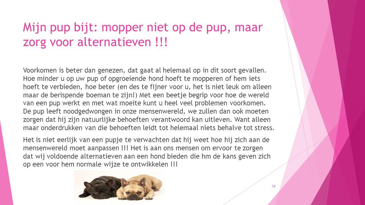 Mijn pup bijt: mopper niet op de pup, maar zorg voor alternatieven !!! Voorkomen is beter dan genezen, dat gaat al helemaal op in dit soort gevallen.