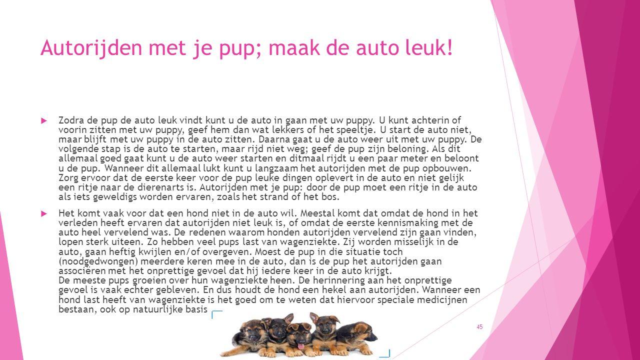 Autorijden met je pup; maak de auto leuk!  Zodra de pup de auto leuk vindt kunt u de auto in gaan met uw puppy. U kunt achterin of voorin zitten met