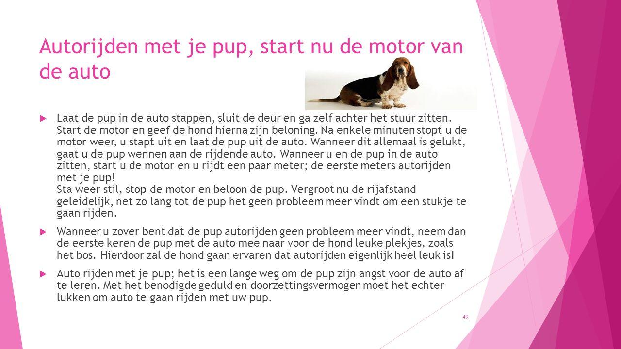 Autorijden met je pup, start nu de motor van de auto  Laat de pup in de auto stappen, sluit de deur en ga zelf achter het stuur zitten. Start de moto