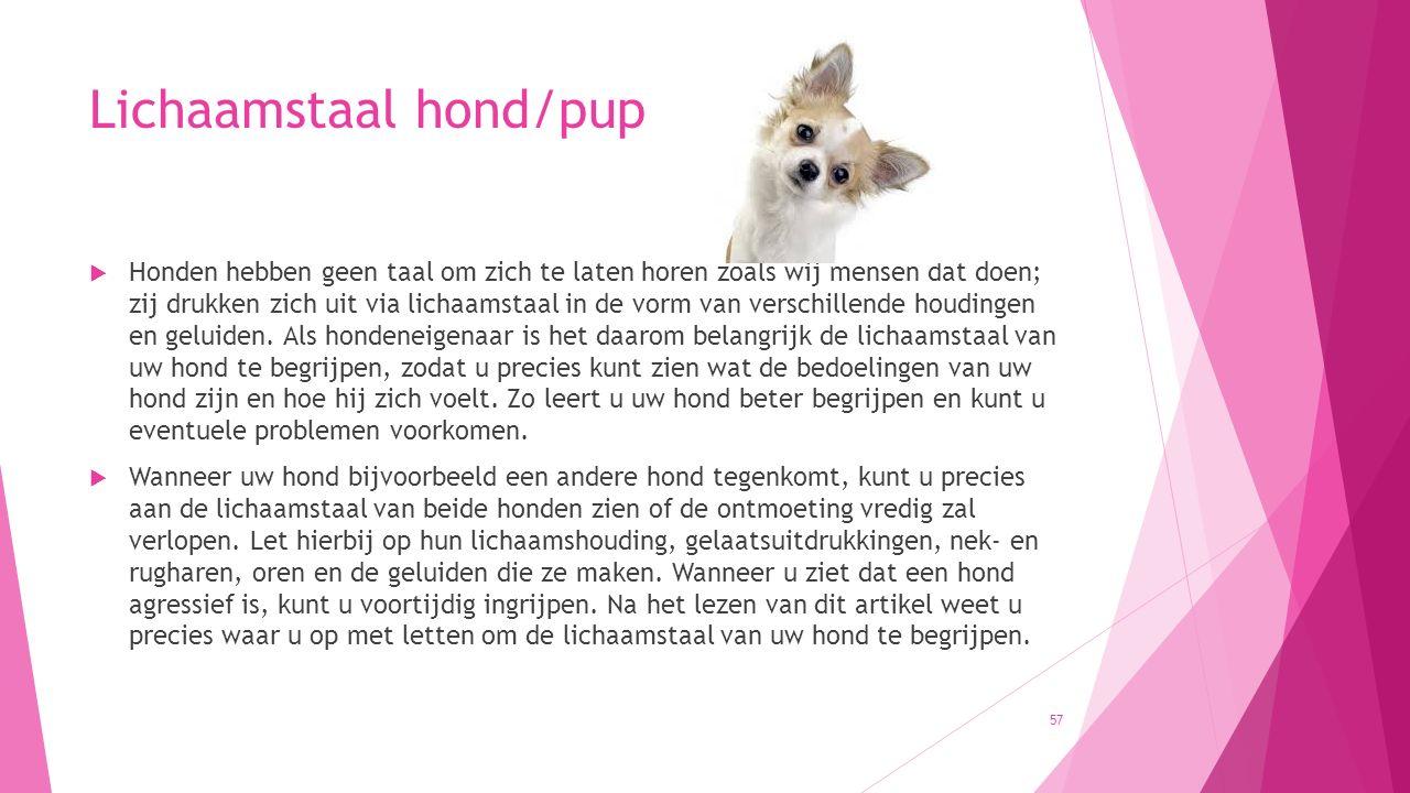 Lichaamstaal hond/pup  Honden hebben geen taal om zich te laten horen zoals wij mensen dat doen; zij drukken zich uit via lichaamstaal in de vorm van verschillende houdingen en geluiden.