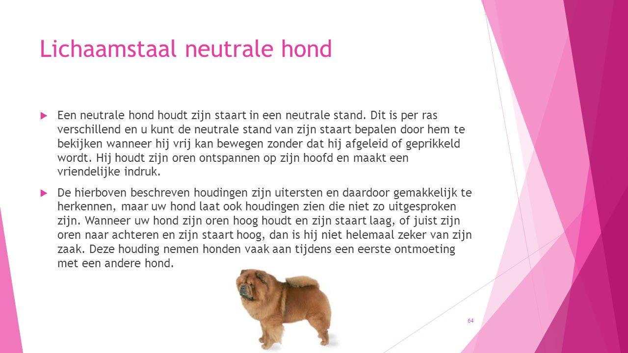 Lichaamstaal neutrale hond  Een neutrale hond houdt zijn staart in een neutrale stand. Dit is per ras verschillend en u kunt de neutrale stand van zi