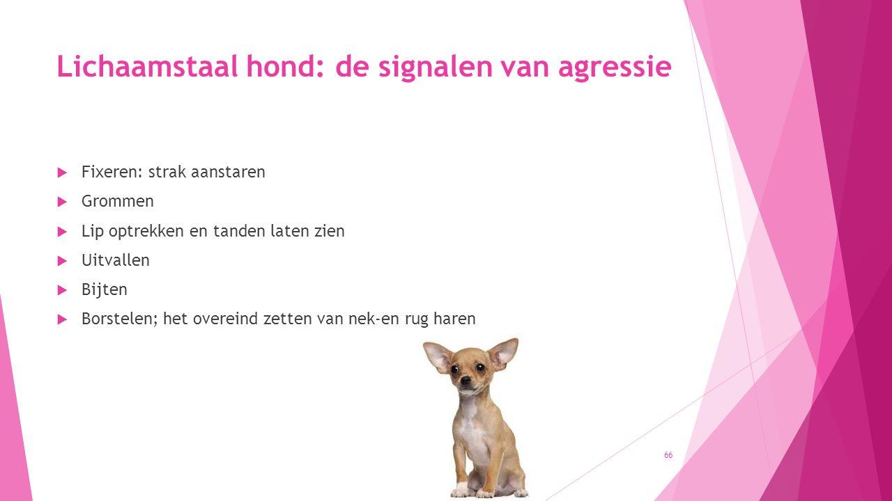 Lichaamstaal hond: de signalen van agressie  Fixeren: strak aanstaren  Grommen  Lip optrekken en tanden laten zien  Uitvallen  Bijten  Borstelen