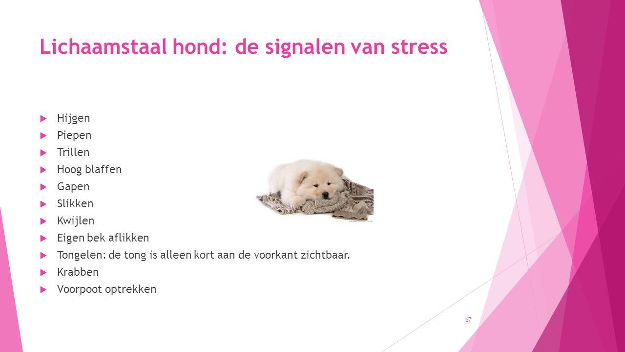 Lichaamstaal hond: de signalen van stress  Hijgen  Piepen  Trillen  Hoog blaffen  Gapen  Slikken  Kwijlen  Eigen bek aflikken  Tongelen: de tong is alleen kort aan de voorkant zichtbaar.