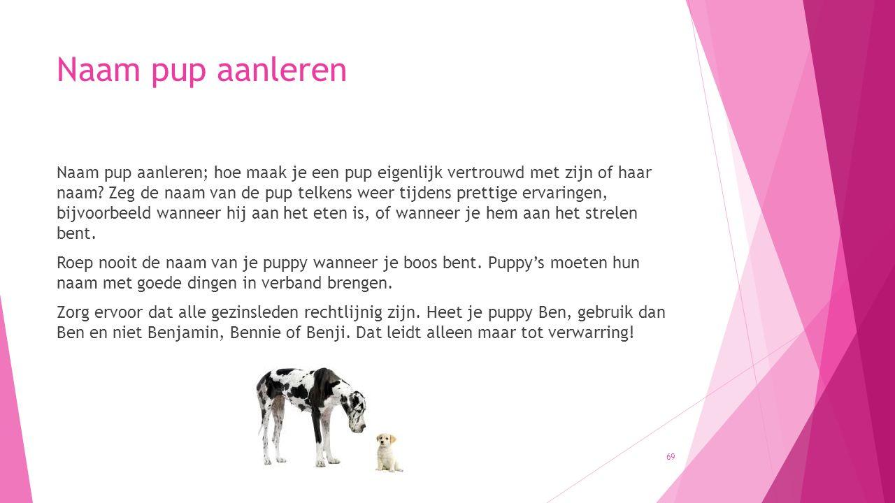 Naam pup aanleren Naam pup aanleren; hoe maak je een pup eigenlijk vertrouwd met zijn of haar naam? Zeg de naam van de pup telkens weer tijdens pretti