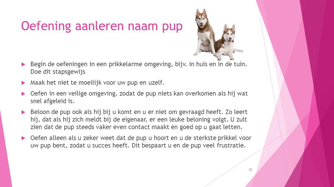 Oefening aanleren naam pup  Begin de oefeningen in een prikkelarme omgeving, bijv. in huis en in de tuin. Doe dit stapsgewijs  Maak het niet te moei