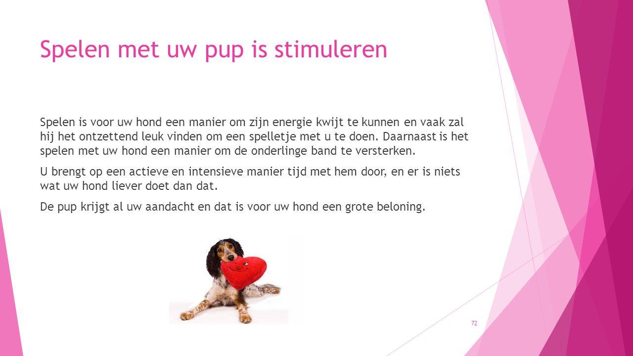 Spelen met uw pup is stimuleren Spelen is voor uw hond een manier om zijn energie kwijt te kunnen en vaak zal hij het ontzettend leuk vinden om een sp